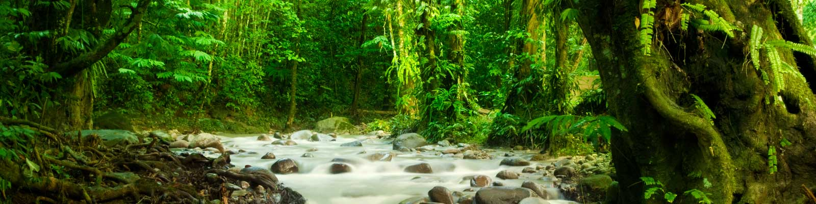 Costa Rica Real Estate Investment - Vacation Rentals - Property Search